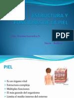 ESTRUCTURA Y FUNCIONES DE LA PIEL.pptx