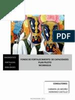 Diagnostico Sector Cultural en Nicaragua Uv