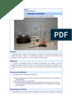 ATIVIDADES E EXPERIMENTOS Ácidos-Bases