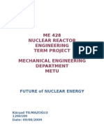 Future of Nuclear Energy