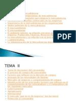 careta.electronicaW7