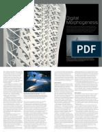 Digital Morphogenesis