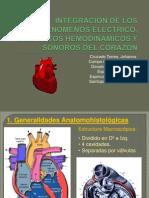 fisiolog cardiaca  sem3