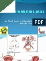 PP Tumor Buli