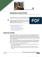 Introduction WAAS