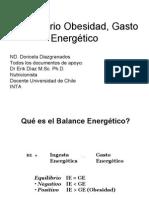 Lab Oratorio Obesidad, Gasto Energetico