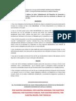 Borrador Solicitud Aplazamiento Firmas Novaciones GEACAM PDF
