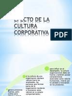 Expo Clima y Cultura Org