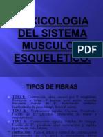 TOXICOLOGIA DEL SISTEMA MUSCULO – ESQUELETICO