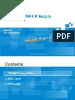 2 WiMAX Principle