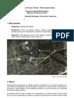 Informe 2013-02-05 Abayubá