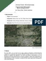 Informe 2013-08-06 Paso a Paso