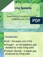 Circulatory Vocabulary