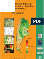 Informe Biomasa Wisdom Argentina