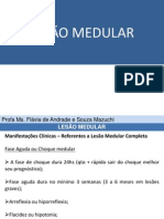 lesomedular-parte2-120521090715-phpapp02