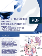INSTITUTO POLITÉCNICO NACIONAL pancreas (1)