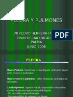4ta Clase Torax - Pulmones - Dr. Herrera