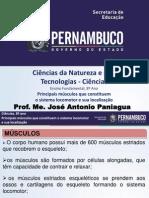 Sistema Muscular E. Fundamental . PPT