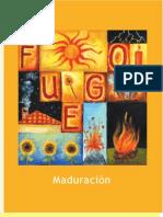 03 - Fuego, Maduracion