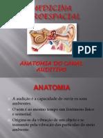 Anatomia Do Ouvido