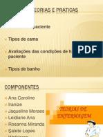Slide Teorias e Praticas-1 (1)