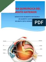 Anatomia Quirurgica Del Segmento Anterior-1