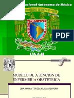 Modelo de Enfermeria Obstetrica
