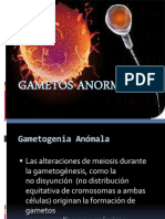 GAMETOS ANORMALES