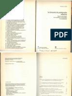 formacionProfnalRefivo_DonalSchon_cap1