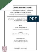 Queso_avena.pdf