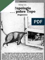 topología del topo