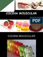 Presentacion Cocina Molecular