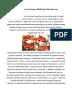 Ganoderma Lucidum – Medicinal Mushroom