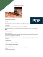 Management of Dengue Hemorrhagic Fever