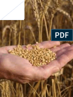 Amendments to National Food Security Bill Proposed by The Different Political Parties