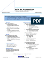 Big Data for the Business User