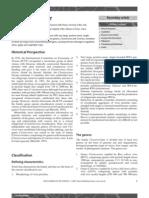 Closteroviridae.pdf