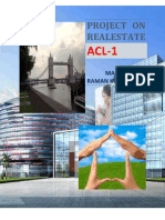 Project on Real Estate by Raman