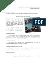2011planificaciones Minima II Unidad, Mepdos