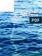 Pan Asian Water Solutions Limited Annual Report 2008