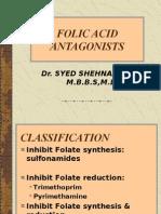 Folic Acid Antag BPT