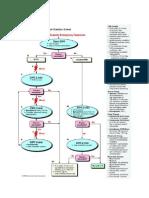 Algoritma ACLS, RJPO.docx