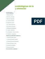 Bases neurobiológicas de la memoria y amnesias