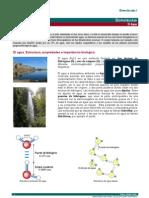 02biomoleculas_I.pdf