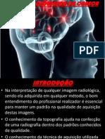 Estudo Cranio
