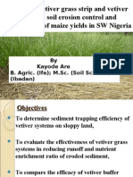 Influence of Vetiver Grass System on Slope Stabilization POWER POINT by Are