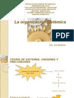 La Organizacion Sistemica