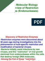 Restriction Endonuklease