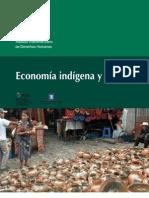 13394699-economiaindigena
