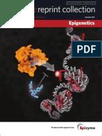 Nature Publishing Group - Epigenetics Collection